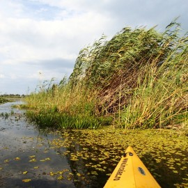 Danube Delta Kayak Tours, Tulcea - Mila23, 3d/2n -  Group