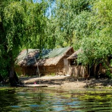 Guided Day Trip in Danube Delta, Tulcea - Mila23 - Group